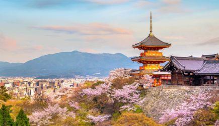 寺や神社巡りなど街歩きも楽しめる